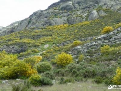 Montaña Palentina.Fuentes Carrionas; paseos sierra madrid caminatas sierra madrid rutas de senderism